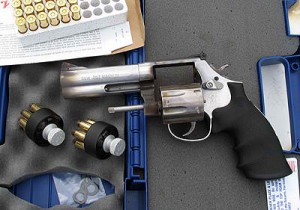 1 Smith & Wesson 686 .357 Magnum