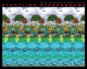 1 The Stereogram