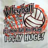 Top 10 Inspirational Volleyball Quotes to Get a Team Going ...