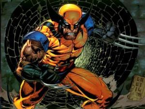 5 Wolverine