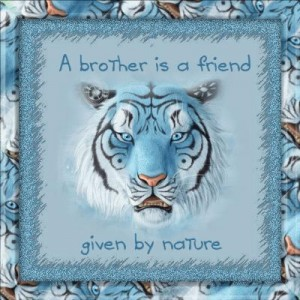 "6 ""A brother is a friend given by nature."""