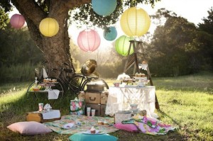 9 Plan a Surprise Picnic