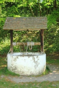 1 My mother-in-law fell down a wishing well. I was amazed, I never knew they worked