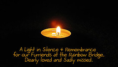 9 A light of remembrance