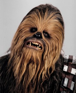 Inspiration for Chewbacca
