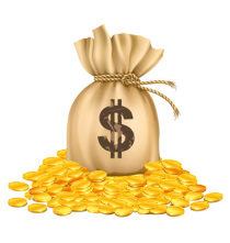 bag with dollars money on pile of golden coins