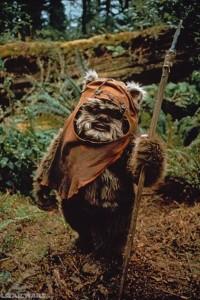 Origin of Ewok